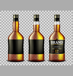 set whiskey rum bourbon or cognac glass vector image