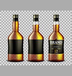 set whiskey rum bourbon or cognac glass vector image
