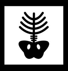 Xray icon vector