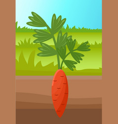 Cartoon carrot vegetable in soil banner vector