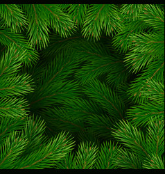 christmas tree branches frame vector image