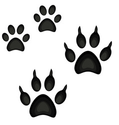 Colorful cartoon cat dog paw footprint icon set vector