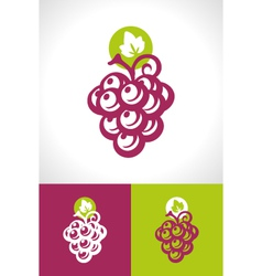 Grape and vine icon vector
