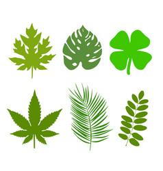 Green leaf ecology nature element logo vector