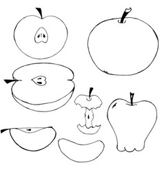 Set of hand-drawn non-colored apples vector