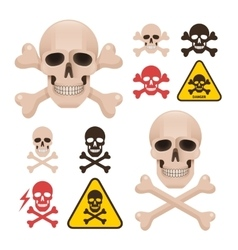 Skull with crossbones as a symbol of danger alert vector