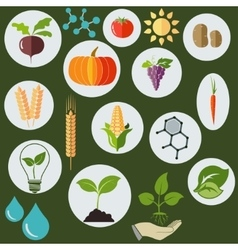 Agronomic icons flat style - vector image vector image