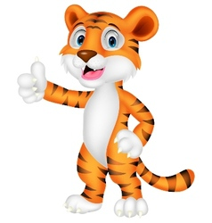Cute tiger cartoon giving thumb up vector image vector image