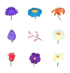 Flowers icons set cartoon style vector image vector image