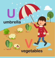 Alphabet letter u-umbrella v-vegetables vector