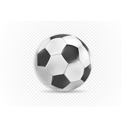 ball isolated on background vector image