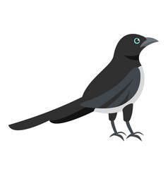 Black magpie icon flat style vector