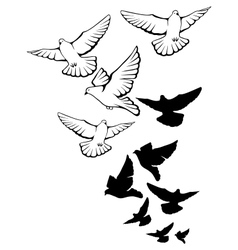 Flying pigeons background Hand drawn vector