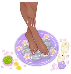 foot bath vector image