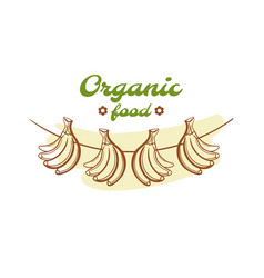Organic food badge design vector