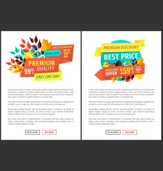 Special promotion offer set vector