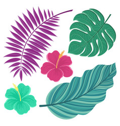 tropical leaves hand drawn isolated leaves vector image