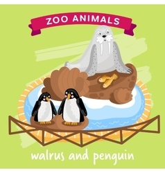 Zoo Animal Walrus and Penguin vector