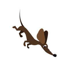 cartoon dachshund vector image