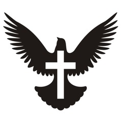 dove with cross symbol vector image vector image