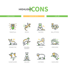 Exotic pets - modern line design style icons set vector