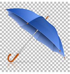 High detailed umbrella vector