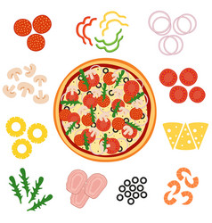 pizza and ingredients for pizza vector image