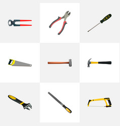 Realistic carpenter claw tongs and other vector
