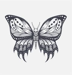 skull butterfly vector image