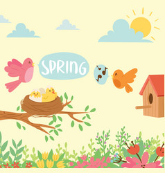 spring natural floral background blossom beauty vector image