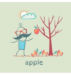 a man stands with a tree on which one apple vector image