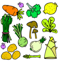 doodle of vegetable style set vector image