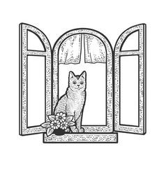 cat in windows sketch vector image