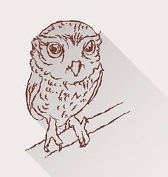 Drawing of little owl with long shadow vector