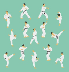 Group of the men showing karate vector
