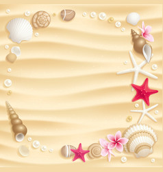 Seashell background vector