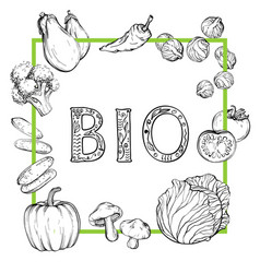 bio background with hand-drawn vegetables black vector image