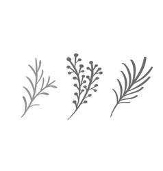 christmas decorative branch elements design floral vector image