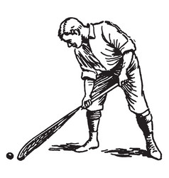 Correct way to pick up ball lacrosse vintage vector
