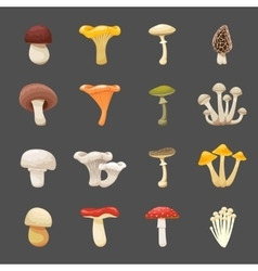mushrooms for menus and vector image
