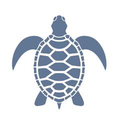 Sea turtle sign vector