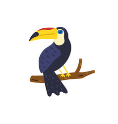Toucan bird hand drawn cute toucan vector