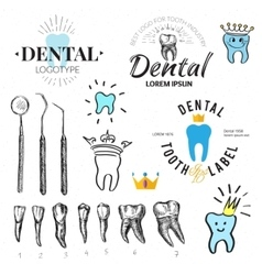 Dental labels and icons set vector image