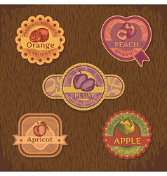 abstract vintage style fruit label vector image vector image