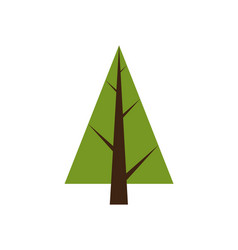 abstract tree spruce plant icon with brown trunk vector image
