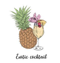 cocktail sketch pineapple sketch cocktails vector image