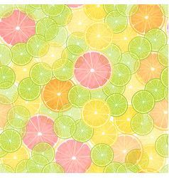 colorful citrus lemon seamless pattern vector image