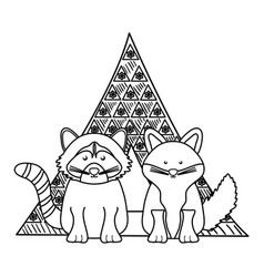 cute fox and raccoon in indian tent with bohemian vector image