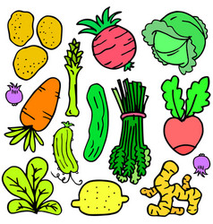 doodle with fresh vegetables set vector image