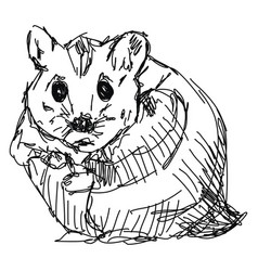 Hamster drawing on white background vector